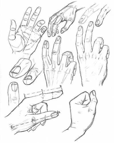 Как читать линии на руках (7 фото )